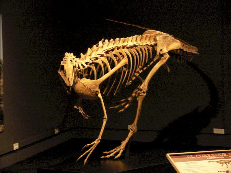 spinosaurus_04