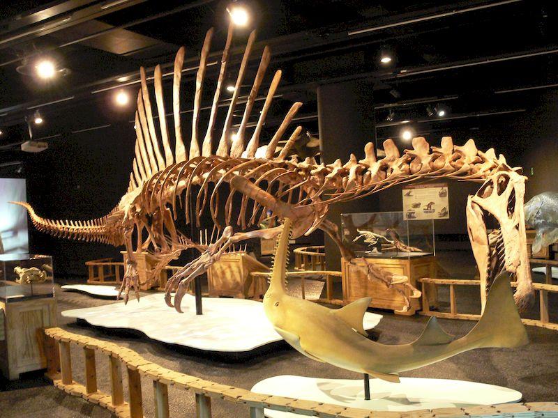 spinosaurus_05